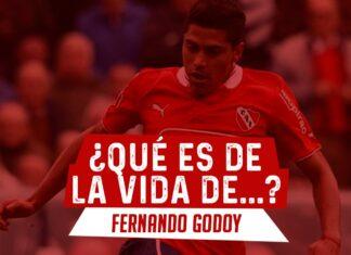 FERNANDO-GODOY-QUE-ES-DE-LA-VIDA-DE-INDEPENDIENTE-PORTADA